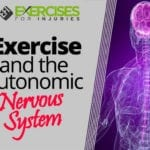 Exercise and the Autonomic Nervous System