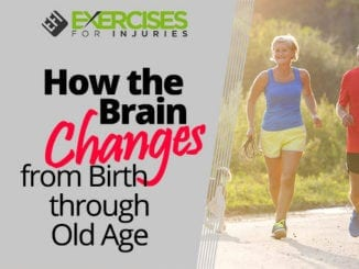 How the Brain Changes from Birth through Old Age