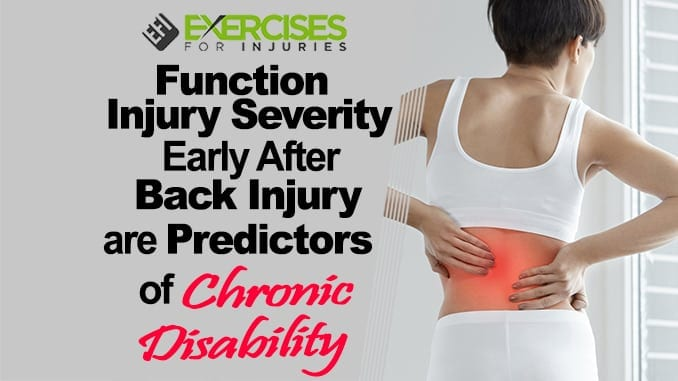Function, Injury Severity Early After Back Injury are Predictors of Chronic Disability