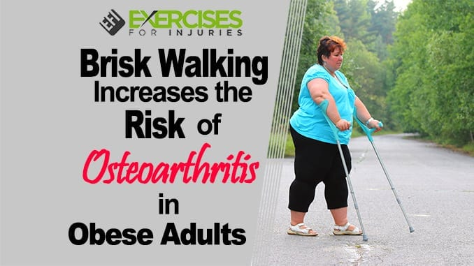 Brisk Walking Increases the Risk of Osteoarthritis is Obese Adults