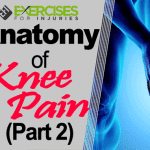Anatomy of Knee Pain (Part 2)