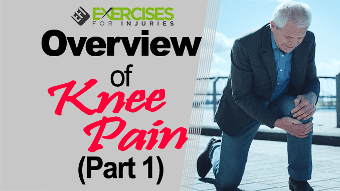 Overview of Knee Pain (Part 1) copy