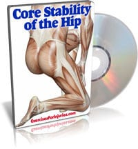 Core Stability of the Hip