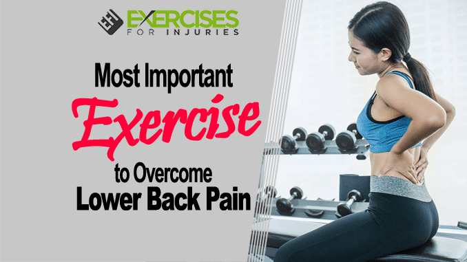 Most Important Exercise to Overcome Lower Back Pain