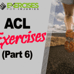 ACL Exercises (Part 6)