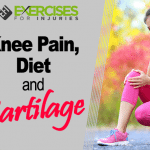 Knee Pain, Diet and Cartilage