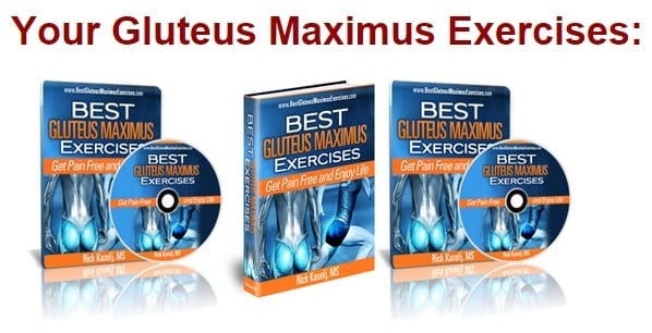 The Best Gluteus Maximus Exercise Program by Rick Kaselj