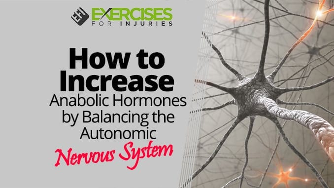 How to Increase Anabolic Hormones by Balancing the Autonomic Nervous System