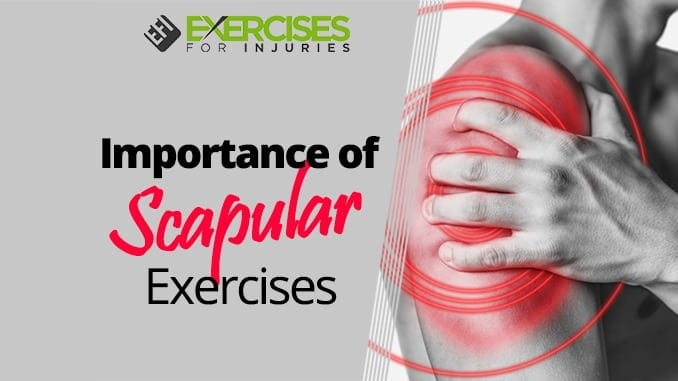 Importance of Scapular Exercises
