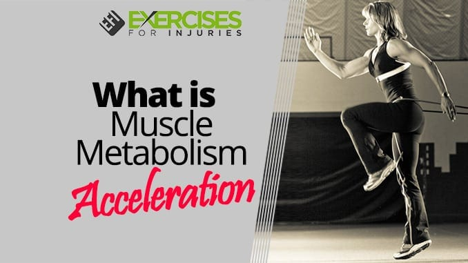 What is Muscle Metabolism Acceleration