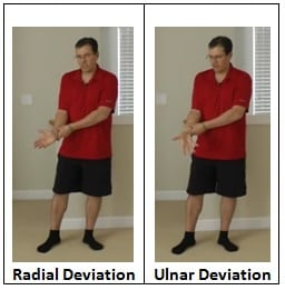 Radial & Ulnar Deviation