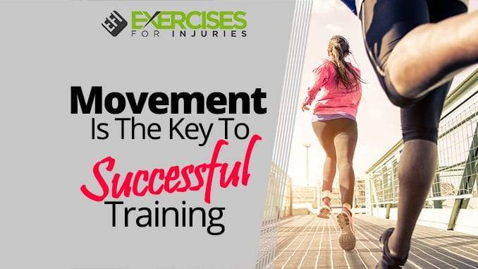 Movement Is The Key To Successful Training