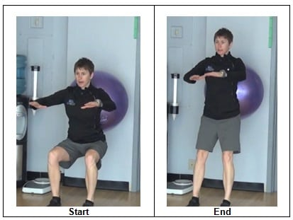 Stability Ball Bi-Lateral Squat