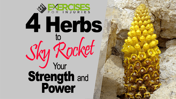 4 Herbs to Skyrocket Your Strength and Power