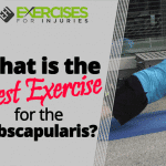 What is the Best Exercise for the Subscapularis?
