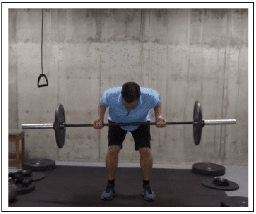 Underhanded Barbell Row
