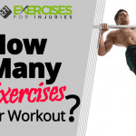How Many Exercises Per Workout?