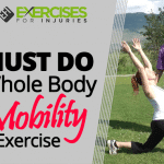 MUST DO Whole Body Mobility Exercise