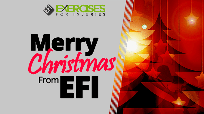 Merry Christmas from EFI
