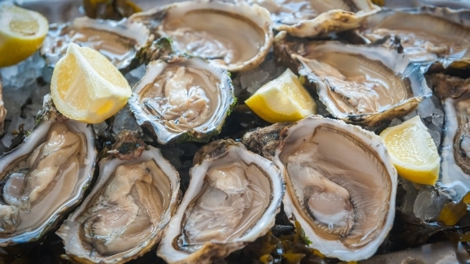 eat oysters to increase sex drive