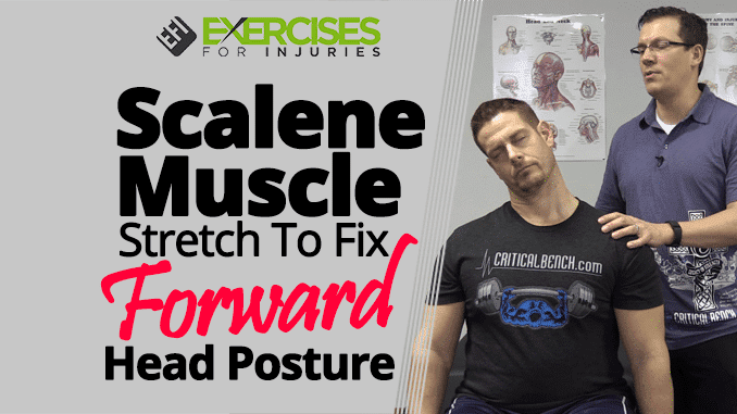 Scalene Muscle Stretch To Fix Forward Head Posture