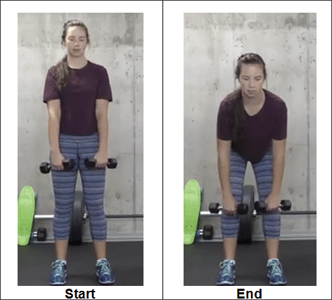2-hip-hinge-exercise