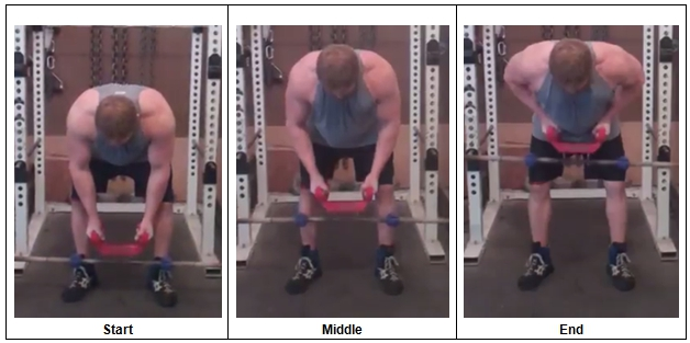 Bent Over Row using BuckBull