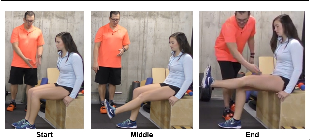 Seated Leg Raises using a chair