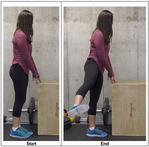 Lateral Leg Lifts