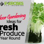 Indoor Gardening Ideas for Fresh Produce Year-round