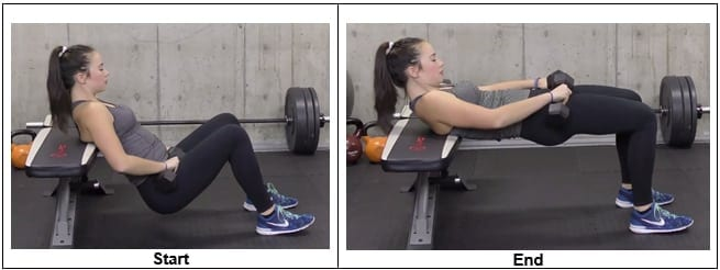Hip Thrust From Bench