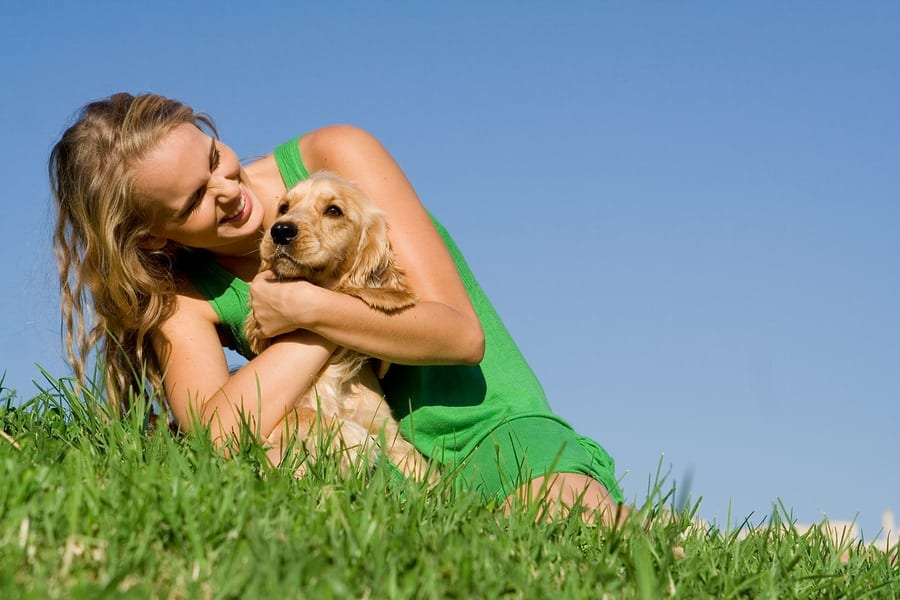 dogs for mental health