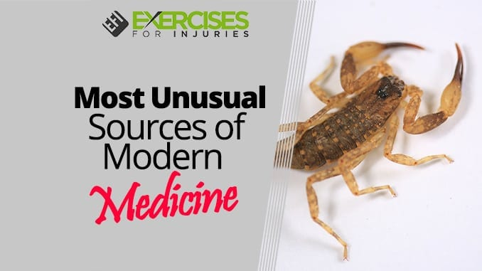 Most Unusual Sources of Modern Medicine