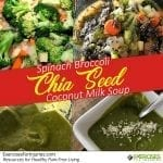 Spinach Broccoli Chia Seed Coconut Milk Soup