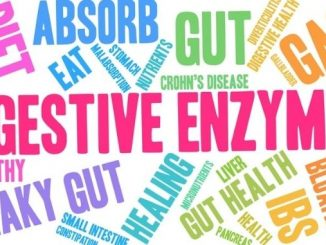 Digestive Enzymes 101