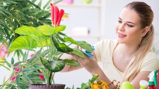 Young-woman-watering-plants