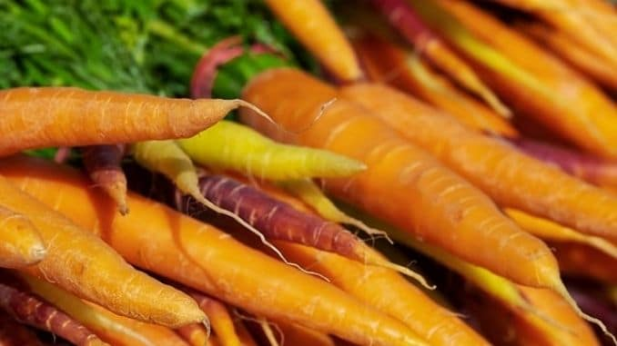 carrots at the farmers' market